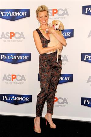 Amy Smart launch of Pet Armor pet protection promise on April 2, 2012