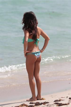 Arianny Celeste wears a sexy Bikini to the beach with her dog Bentley in Miami Nov 1, 2013