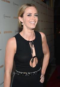 Emily Blunt  Arthur Newman  Los Angeles Premiere -- Hollywood, Apr. 18, 2013