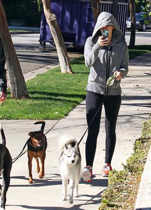 Miley Cyrus walking her dog in Studio City 1/28/13