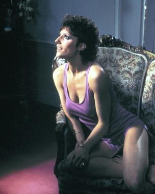 Suzanne Danielle in lingerie