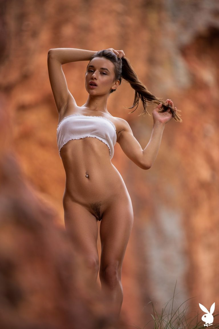 hilary clinton fake nude pics