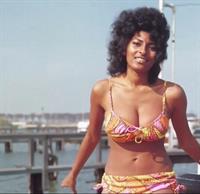 Pam Grier in a bikini